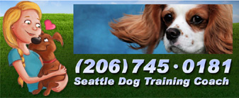Private Dog Training What kind of dog trainer is Bette Yip? See what previous students say!